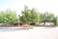 patio3.jpg